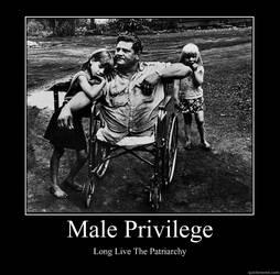 [Imagem: maleprivilege.jpg]